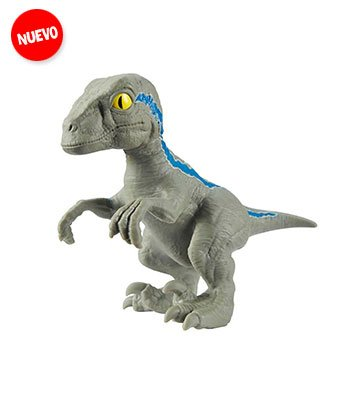 raptor-00.jpg